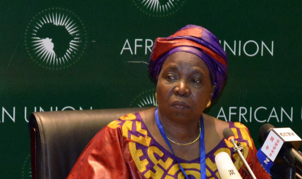 South African Home Affairs Minister Dlamini-Zuma addresses the media during leaders meeting at the African Union in Addis Ababa